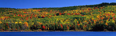 Maine Shore Photograph - Autumn Eagle Lake, Acadia National by Panoramic Images