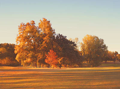 Autumn Evening On The Golf Course Print by Ann Powell