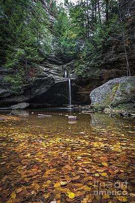 James Dean Photograph - Autumn Falls by James Dean