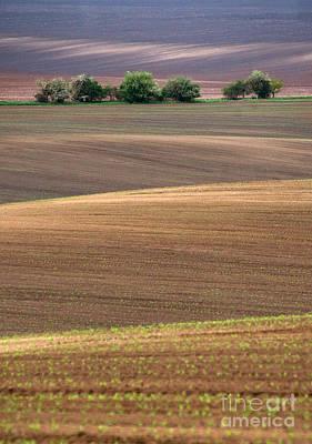 Autumn Fields Of Moravia Print by Jaroslaw Blaminsky