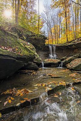 James Dean Photograph - Autumn Flows by James Dean