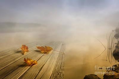 Leave Photograph - Autumn Fog by Veikko Suikkanen