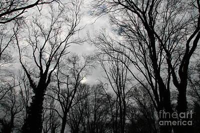 Autumn Forest Original by Lali Kacharava
