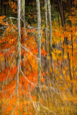 Autumn Forest Reflection Print by Jeff Sinon