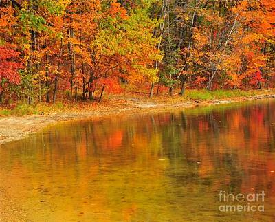Autumn Forest Reflection Print by Terri Gostola