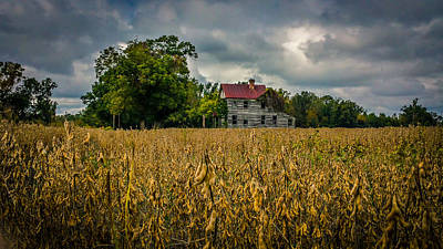 Autumn Harvest Original by Chris Modlin
