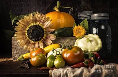 Cucumber Photograph - Autumn Harvest by Edward Fielding