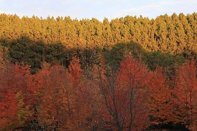 Autumn In Arcadia Print by Sheryl Burns