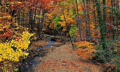 Autumn In Full Bloom Print by Frozen in Time Fine Art Photography