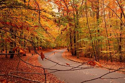 Autumn In Holmdel Park Print by Angie Tirado