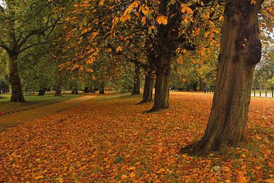 Autumn In Hyde Park Original by Musa GULEC