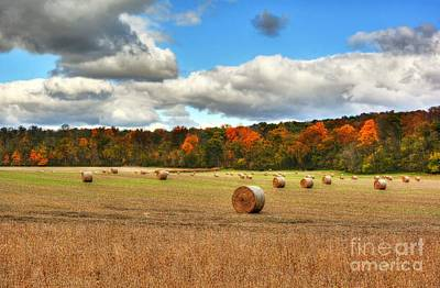 Southern Indiana Photograph - Autumn In Indiana by Mel Steinhauer