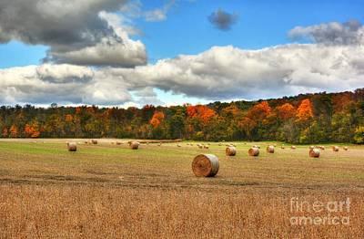 Autumn In Indiana Print by Mel Steinhauer