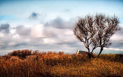 Autumn Photograph - Autumn In Maine by Bob Orsillo