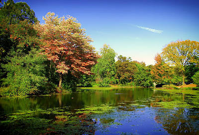Autumn In Prospect Park - Brooklyn Print by Mountain Dreams