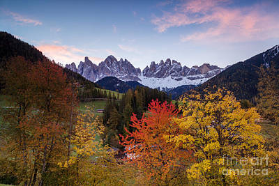 Tree Photograph - Autumn In The Mountains - Dolomites - Italy by Matteo Colombo