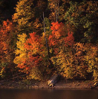 Autumn In The Ozarks Print by Greg Kopriva
