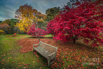 Benches Digital Art - Autumn In The Park by Adrian Evans