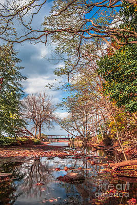 Webster Ny Photograph - Autumn In Webster Park by Ken Marsh