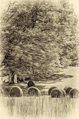 Autumn In West Virginia - Paint Sepia Print by Steve Harrington