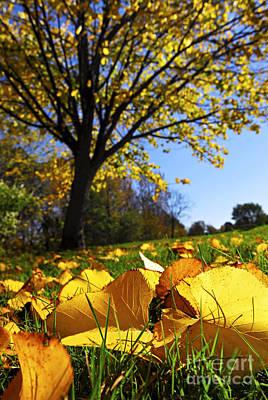 Autumn Landscape Print by Elena Elisseeva