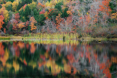 Autumn Landscape Reflections Print by Bill Wakeley