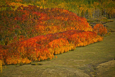 Photograph - Autumn Lava Flow by Jeremy Rhoades