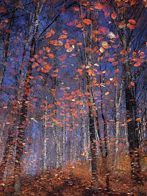 Autumn Leaves Print by Florentin Vinogradof