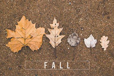 Autumn Leaves On The Ground Print by Aldona Pivoriene