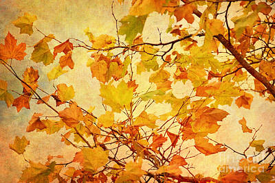 Autumn Scene Digital Art - Autumn Leaves With Texture Effect by Natalie Kinnear