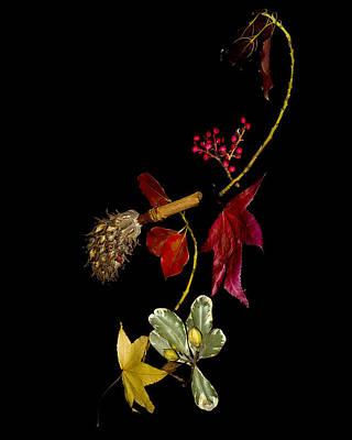 Autumn Line Print by Camille Lopez