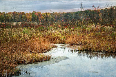 Natural Resources Digital Art - Autumn Marshland by Dale Kincaid