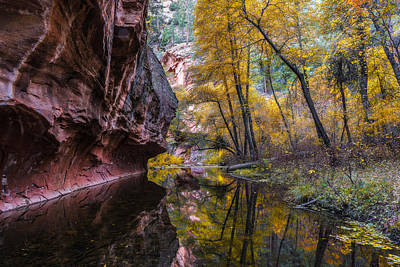 Autumn Mirror Print by Guy Schmickle