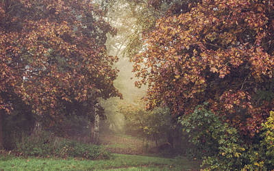 Autumn Mist In A Woodland Glade Print by Chris Fletcher