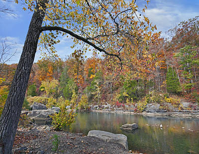 Ozarks Photograph - Autumn Oak And Hickory Forest by Tim Fitzharris