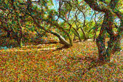 Autumn Oak Forest Print by Angela A Stanton