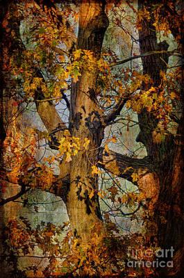 Digital Art - Autumn Oaks In Dance Mode by Lois Bryan