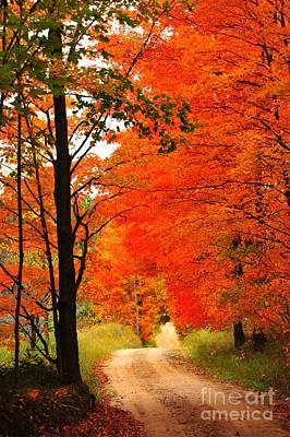 Rustic Photograph - Autumn Orange 2 by Terri Gostola
