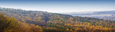 Miniature Effect Photograph - Autumn Panorama With Colored Forest With Diorama Effect by Vlad Baciu