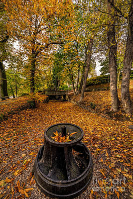 Field Digital Art - Autumn Park by Adrian Evans