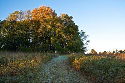 Autumn Photograph - Autumn Path by Bill Cannon