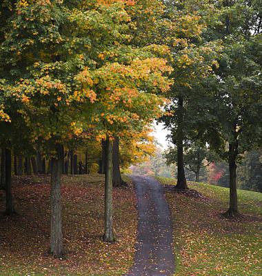 Autumn Path Print by M Cohen