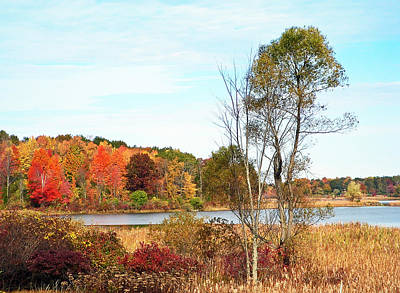 Autumn Pond Print by Aimee L Maher Photography and Art Visit ALMGallerydotcom