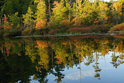 Autumn Road Fractal Digital Art - Autumn Reflections In Manistee National Forrest On East Lake by Rosemarie E Seppala