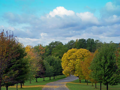 Pond Photograph - Autumn Road by Aimee L Maher Photography and Art Visit ALMGallerydotcom
