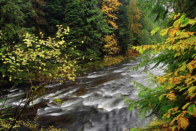 Salmon River Photograph - Autumn, Salmon River, Oregon, Usa by Michel Hersen