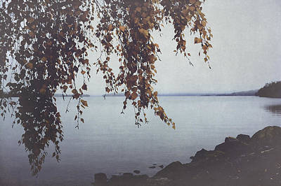 Lake Photograph - Autumn Shore by Ari Salmela