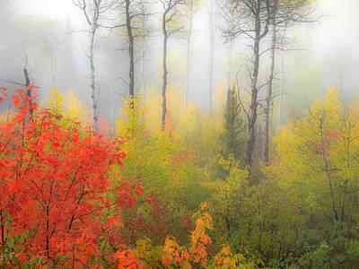 Autumn Silence Print by Leland D Howard
