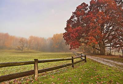 Autumn Splender Print by Marcia Colelli