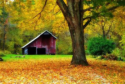 Autumn Splendor In West Virginia Print by Chastity Hoff